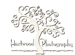 Hartwood Photo